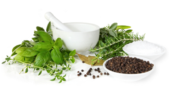 Herbal hair loss treatment options – do they actually work?